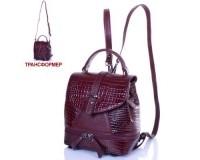 Женская кожаная сумка-рюкзак DESISAN (ДЕСИСАН) SHI573-626