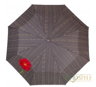 Зонт женский автомат AIRTON (АЭРТОН) Z3911-5177